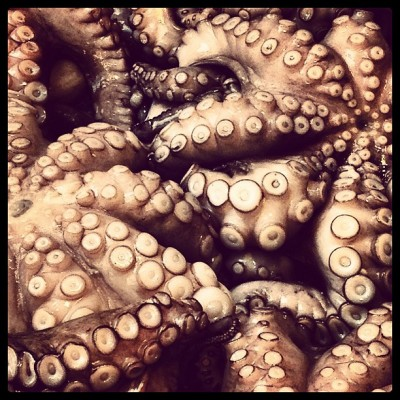 Octopus, Rialto Market, Venice, Charlie Grosso